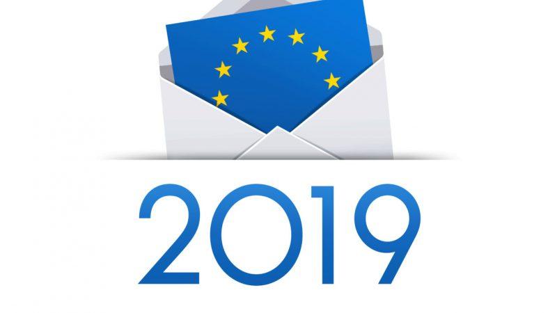 Plata indemizațiilor persoanelor care au participat la alegerile Europarlamentare și la Referendumul